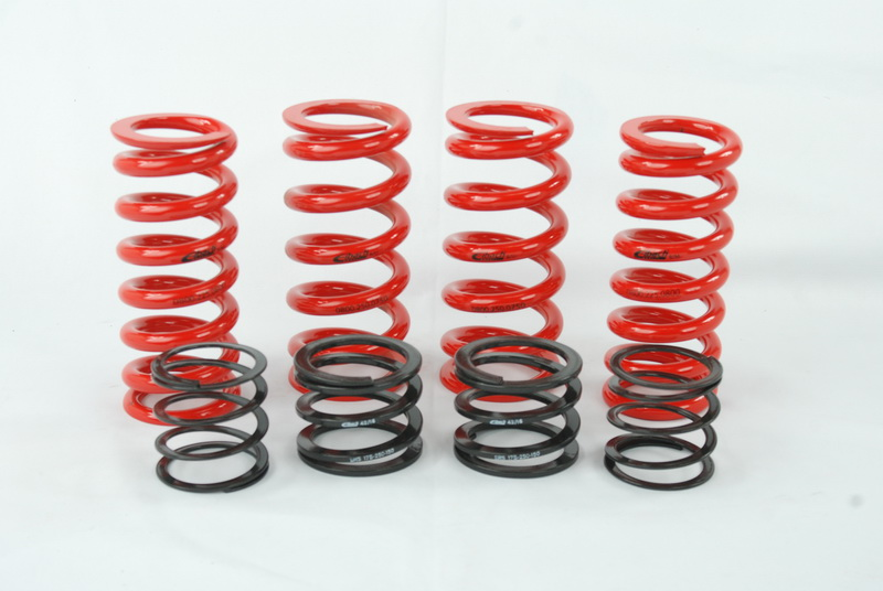 Eibach ERS Spring kit for Audi B5 chassis w/ Raceline dampers